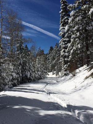 xcountry snow